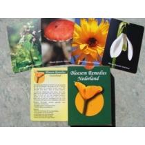 Speelkaarten Bloesem Remedies Nederland