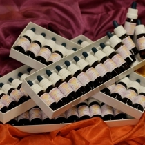 Complete set 48 stockflesje 10 ml