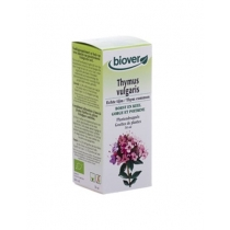 Echte tijm / Thymus vulgaris - Biover