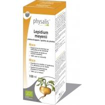 Lepidium Meyenii - Plantendruppels - Physalis