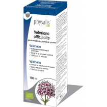 Valeriana Officinalis - Plantendruppels - Physalis