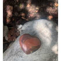 Petrified wood Heart -...