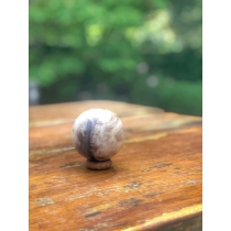 Gemstones petrified wood