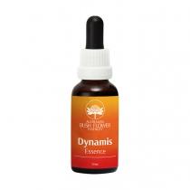 Dynamis Essence  -  Energie...