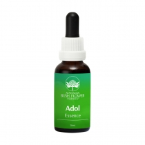 ADOL ESSENCE  -  PUBERTEIT...