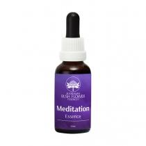 Meditation Essence  -...