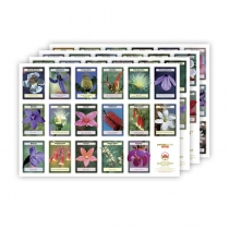 posters Bush Flowers - set van 4