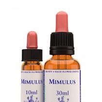 Mimulus (maskerbloem)