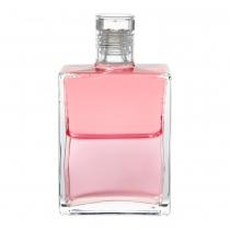 023. ROSE PINK / PINK -...