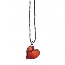 Gepassioneerd hart - hanger