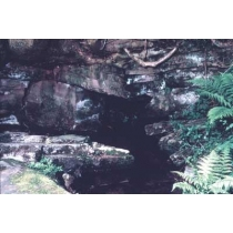 Bronwater (Rock Water)