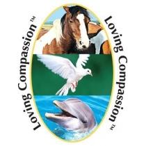 Loving Compassion (Liefdevol mededogen)