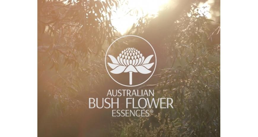 Kennismaking met Ian White, oprichter van de Australian Bush Flower Essences